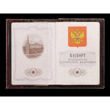 Обложка на паспорт ОПР-1 Person