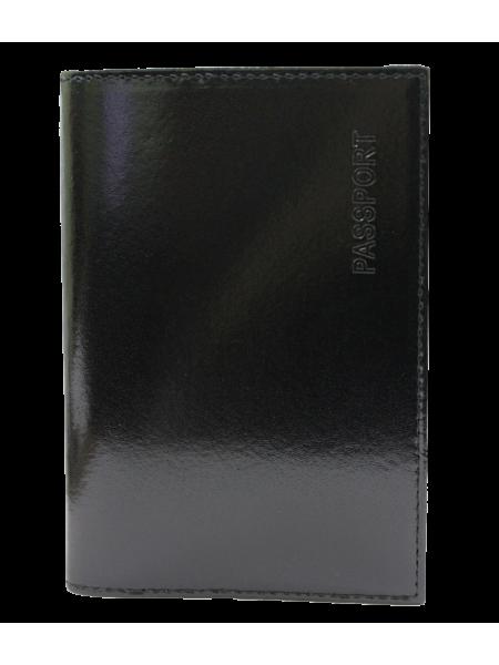 Обложка для паспорта СТ-ПО-2 Г Старк